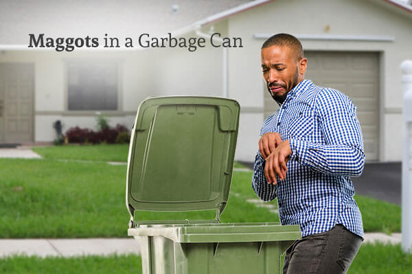 Man looking disgustedly at his outdoor garbage can, with the words, maggots in a garbage can